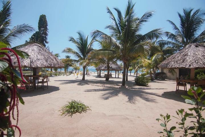 Casa palma beach apartments