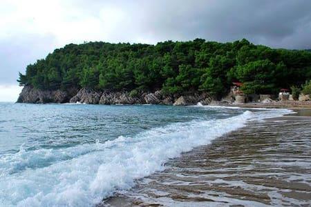 Черногория,отдых на море - Bar