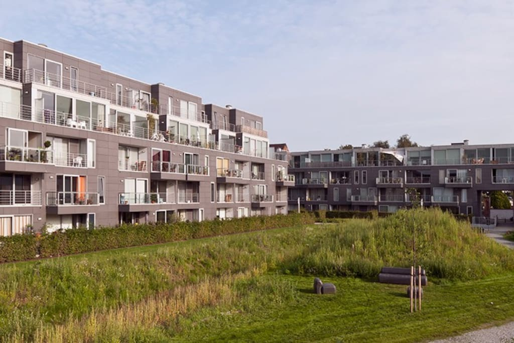Park side view of apt. left bldg is where apt is located. Building in background is on the Forelstraat side of Het Volk.