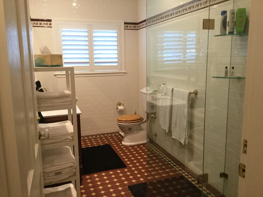 Bathroom adjoining bedroom