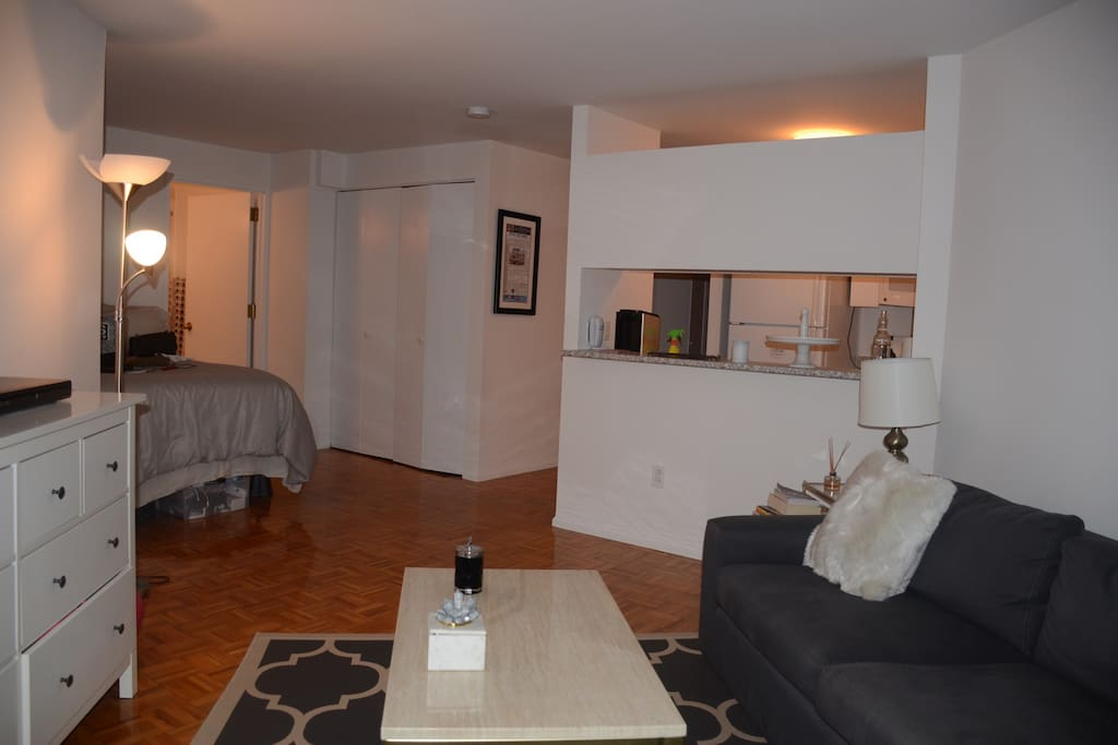 Layout of the apartment. Queen-size bed and bathroom to the left. Kitchen to the back right.