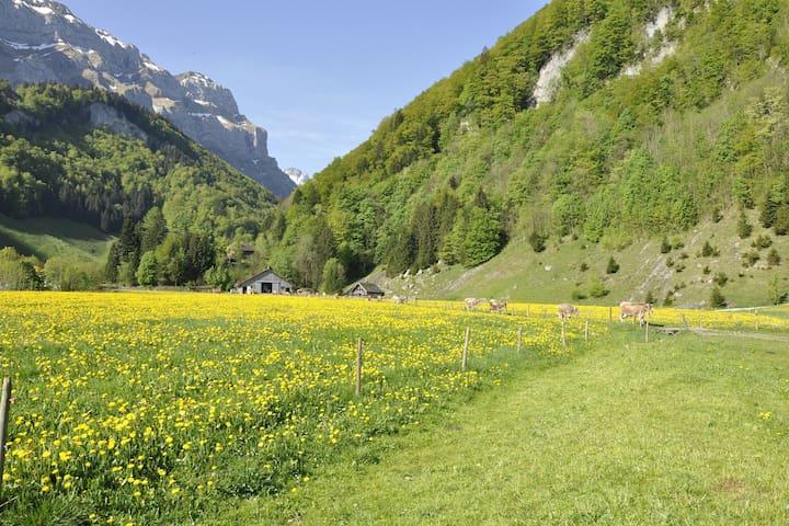 Experience Auen 2, Swiss unique mountain landscape