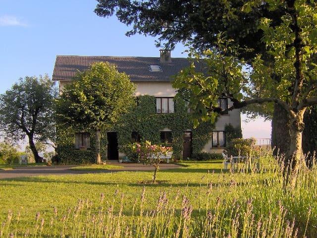 Chambres d'hôtes Bellevue - Mauriac - Vendégház
