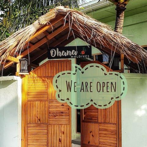 Tropical Comfy Room on the Island of Dhiffushi