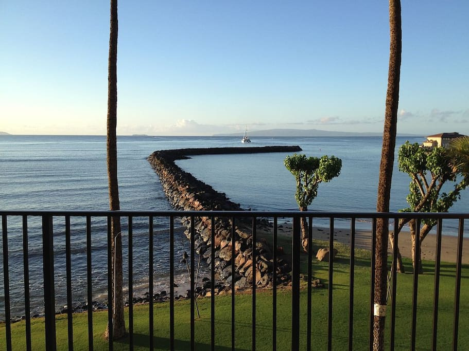 A view of the beach and sea wall just steps from your lanai.