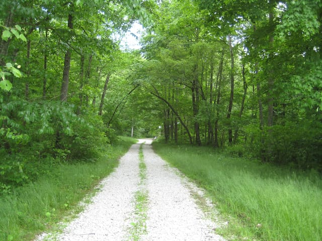 Private lane to cottage.