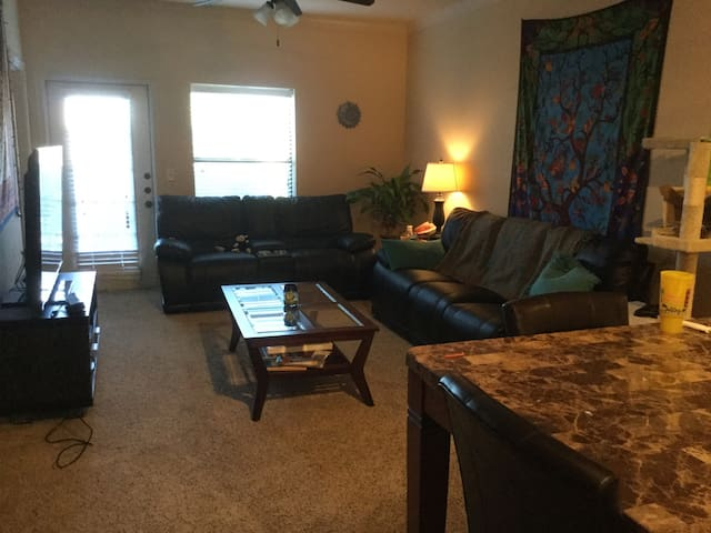 Beautiful & comfortable - Corpus Christi - Apartment