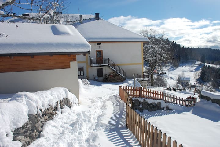 Cozy apartment in the Dolomites - Lavarone