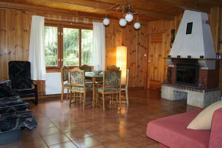 Dom Bory Tucholskie, Osiek, las, jezioro, grzyby