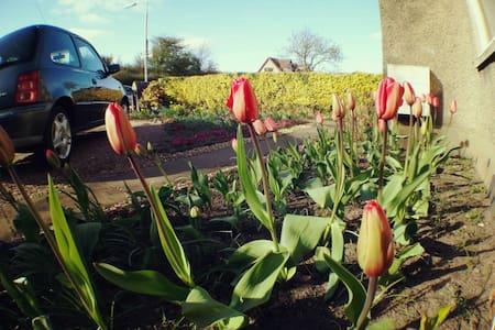 Warmly B&B by St. Andrews - Kettlebridge