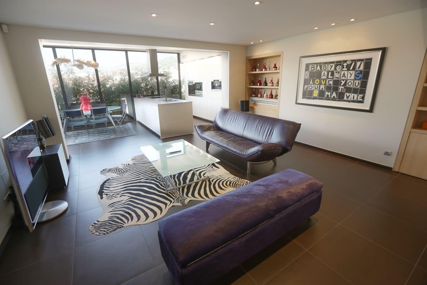 Grand salon design avec HIFI et TV BO
