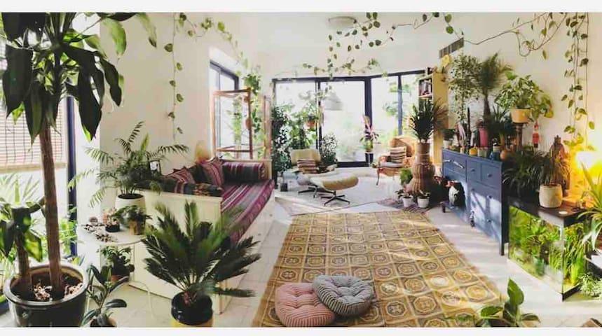 Jungle house in the heart of dubai.