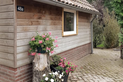 Holiday homes Hannes A