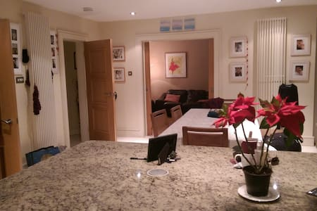 Large Bedroom sleeps 2 or 3 - Foxrock - B&B