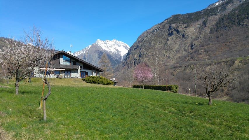 Apartment in chalet in Aosta Valley