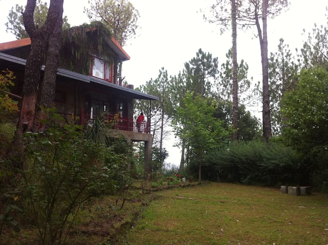 Rambling Rose - Entire Cottage, Himachal Pradesh - Solan - Casa