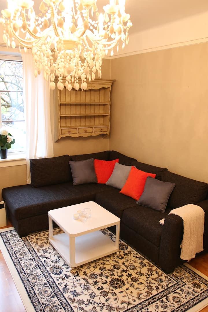 Hyggelig leilighet på St.Hanshaugen