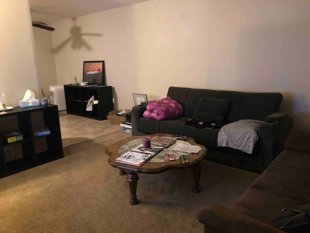 420 FRIENDLY SOFA SHARED FREE STUDIO420 ACCESS