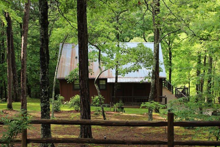 The 'Ole Bear' Rustic Mountain Cabin
