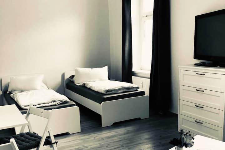 ZW01 Gemütliches, zentral gelegenes, 1-Zimmer Apartment in Zwickau
