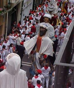 San Fermin  Pamplona. Enjoy fiesta - Pamplona