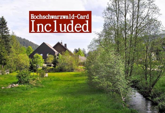 Apartment C6 f. 4-5 Pers. HOCHSCHWARZWALD-CARD! - Sankt Blasien - Appartement