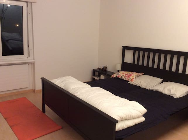1 Personal Bedroom in an Apt. 20 mins  to ZurichHB