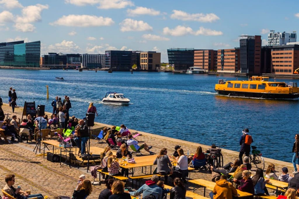 Summertime at Islands Brygge waterfront