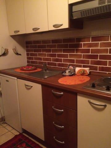 unabhängige Zimmer mit Kochnische und Bad