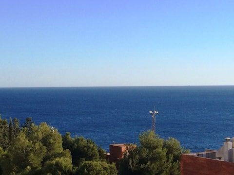 CAP SALOU -VUE SUR MER PLEIN SUD-PARKING- WIFI SAT