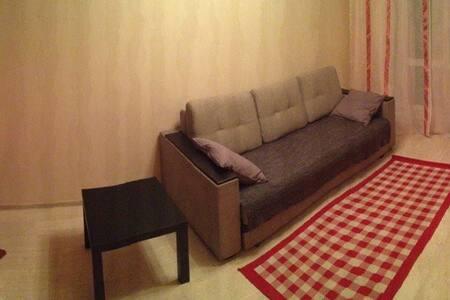 Однокомнатная квартира недалеко от центра города - Nowosybirsk