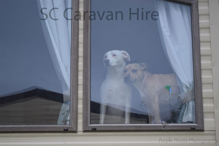 Caravan at Seton Sands within walking distance