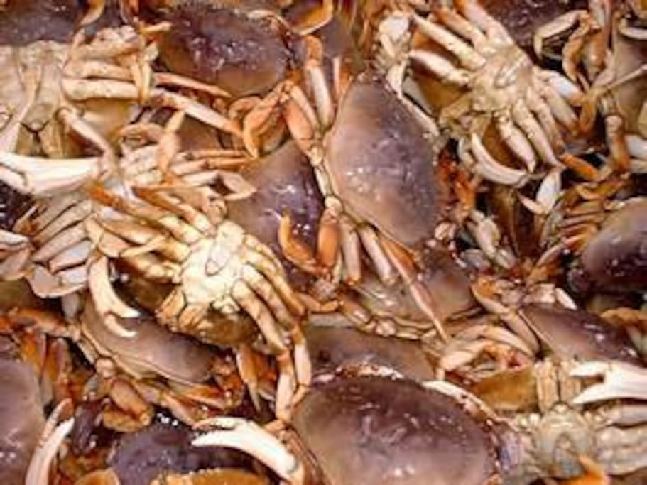 crabbing is available year round
