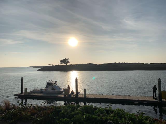 Harbortown Point Marina Resort