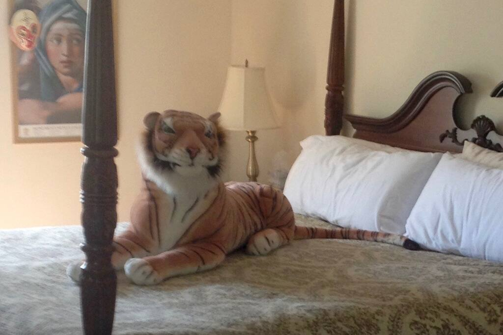 We have three listings with a TIGER on the bed.  Go on a photo safari and find them ALL!  Room^ + Private Bath Lawrenceville Princeton