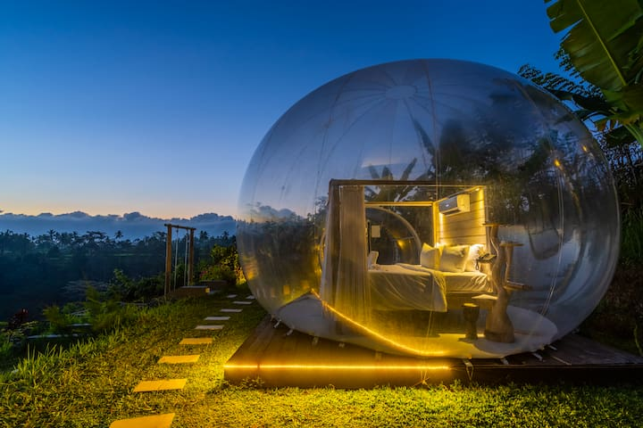 Transparent Bubble Dome with jungle view