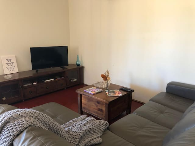 Lounge area with fold out bed