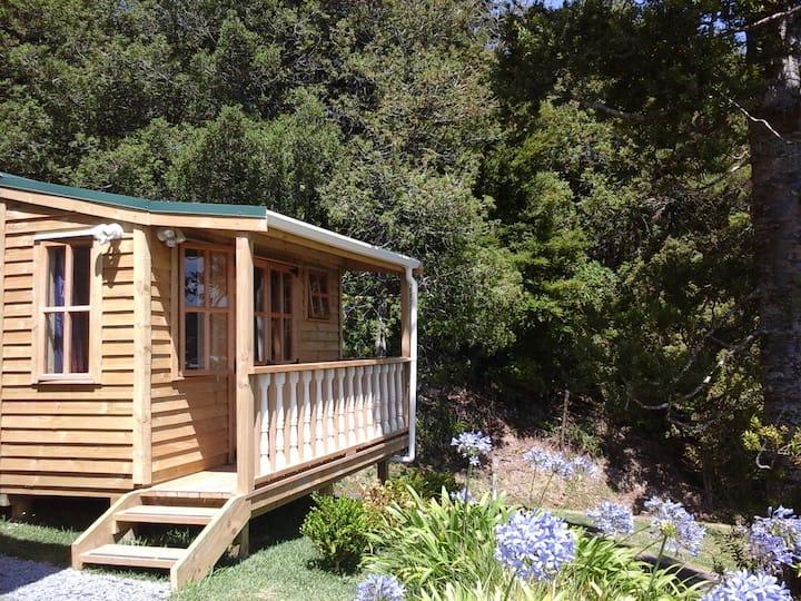 Kauri Cabin