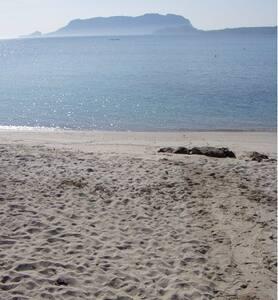 Casa Vacanze vicino alla spiaggia - Pittulongu - 公寓