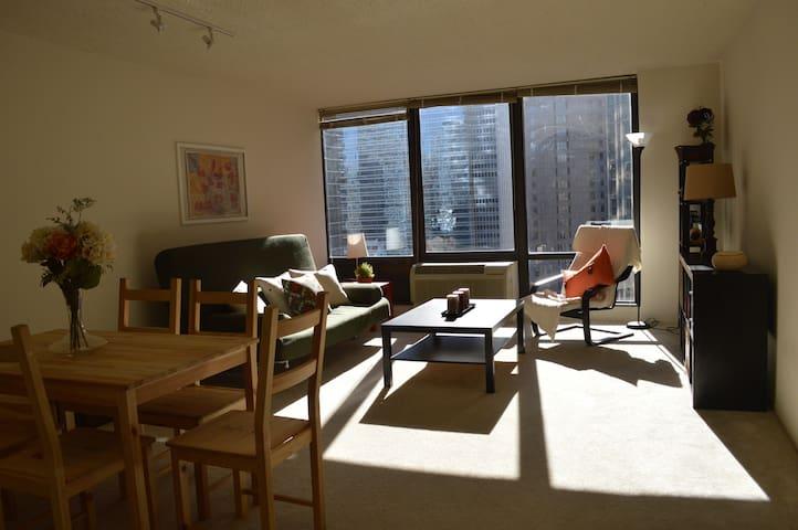 Luminous & spacious 1BR in the Loop - Chicago - Apartment