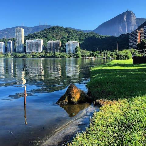 Ipanema - In the heart of Lagoa - Rio de Janeiro - Appartement
