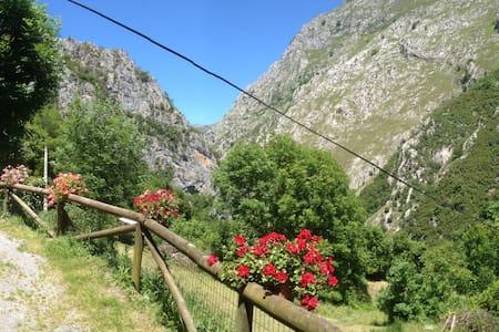 Mágica Panorámica Natural Picos de Europa.ASTURIAS - San Ignacio