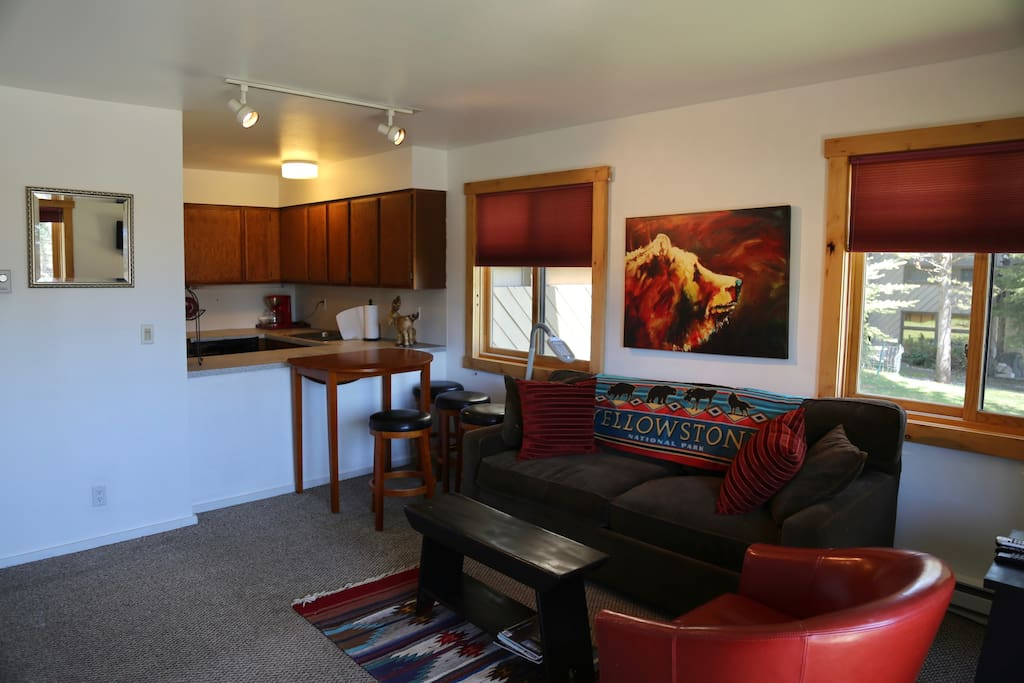 living room  including queen size pull out couch