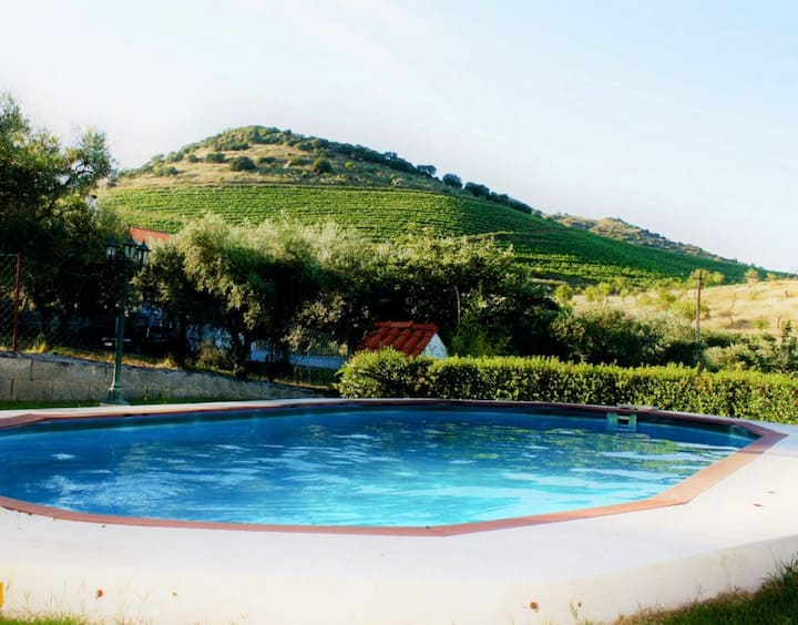 Villa with 3 bedrooms in Lodões, with wonderful mountain view, private pool, enclosed garden