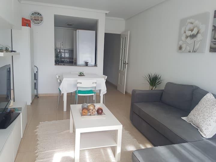 Homely apartments Viñalaguna