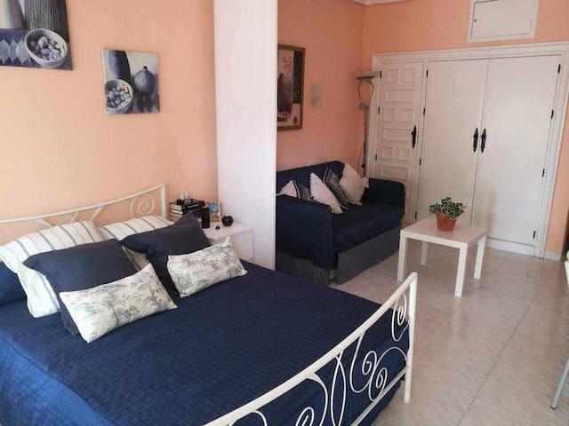 Carihuela Palace Studio 204