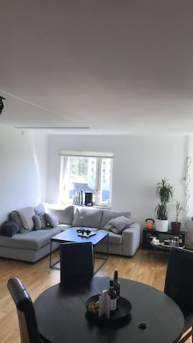 Spacey Apt-Only 20min to city center, free parking