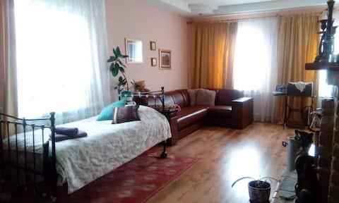Меблированные комнаты в историческом центре г. Мир