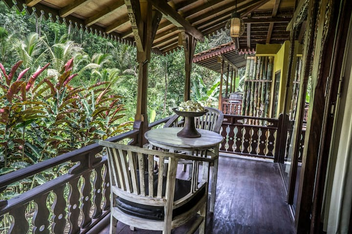 The jungle view is righ next to your own patio
