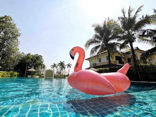 『蔷薇』花园度假村别墅 • 超美泳池 • 高尔夫 • 国际学校• 新房特惠